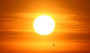 Sunlight Benefits Health